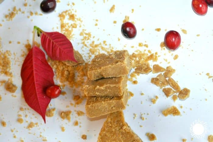 Brown Sugar Fudge. French Canadian Recipe. The Flying Couponer.